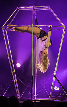Carline, acrobate aérienne, diamant